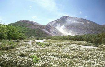 北海道川湯温泉